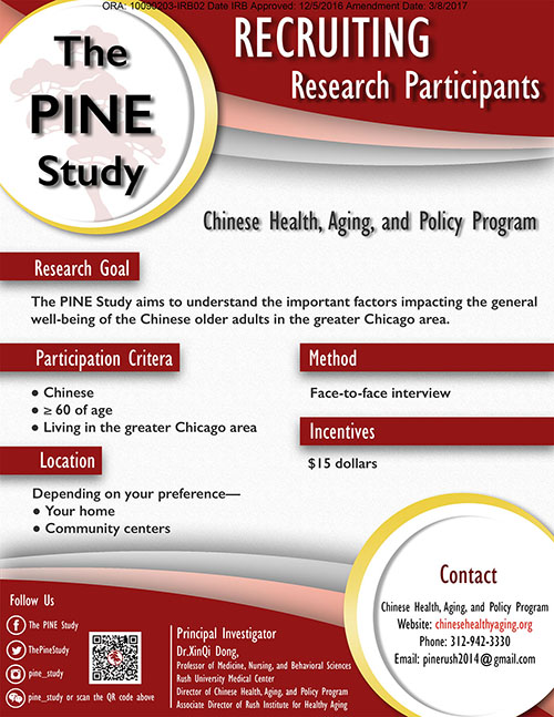 The PINE Study Flyer in English